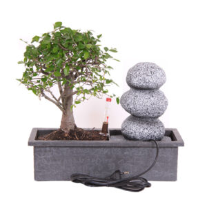 Bonsai waterval